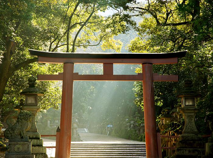 AdobeStock 34073619 - 神々が集う国「日本」